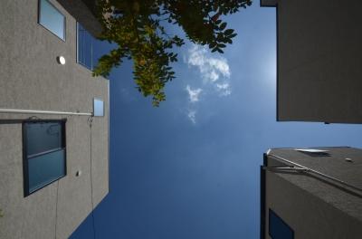 中村プロジェクト-注文住宅同様に丁寧につくりあげた5棟の建売住宅- (全景(見上げ))