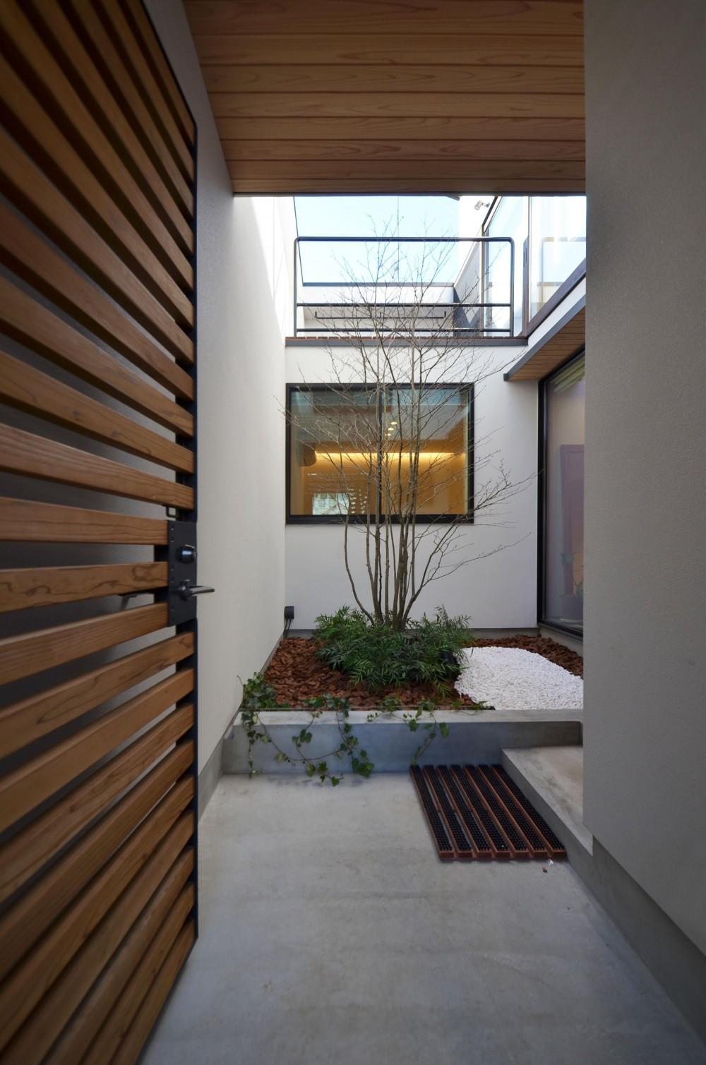 桃井M邸-中庭を中心としたコの字配置の立体コートハウス- (門扉より中庭を望む)
