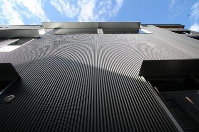 ガルバリウム鋼板小波板の外壁 (SKY FIELD HOUSE)