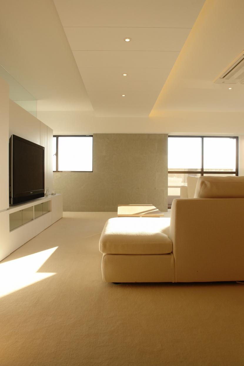 Vent Vert Nampeidai Penthouse (リビング)