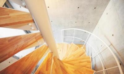 ギャラリーのある家 (1階から3階まで螺旋階段によって繋がっている)