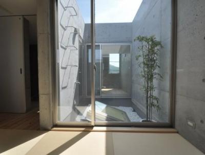 ギャラリーのある家 (3階にある中庭)