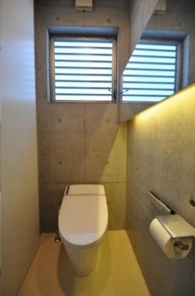 ギャラリーのある家 (シンプルなトイレ)