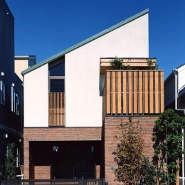 浜甲子園の家 (片流れ屋根の外観)