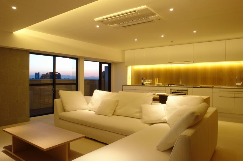 Vent Vert Nampeidai Penthouse (リビングダイニングキッチン3)