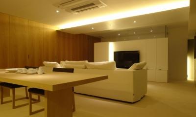 Vent Vert Nampeidai Penthouse (リビングダイニングキッチン4)