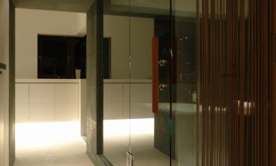 Vent Vert Nampeidai Penthouse (廊下3)