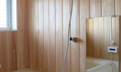 YD邸新築工事 (浴室)