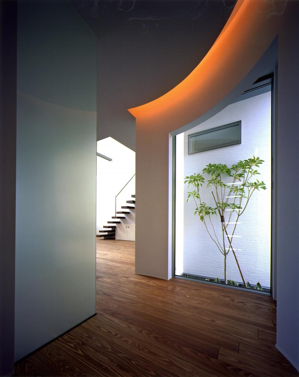 N2-house 「切抜かれた家」 (玄関)