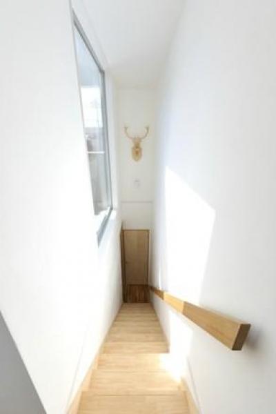 KJ-house (階段から見下ろして)