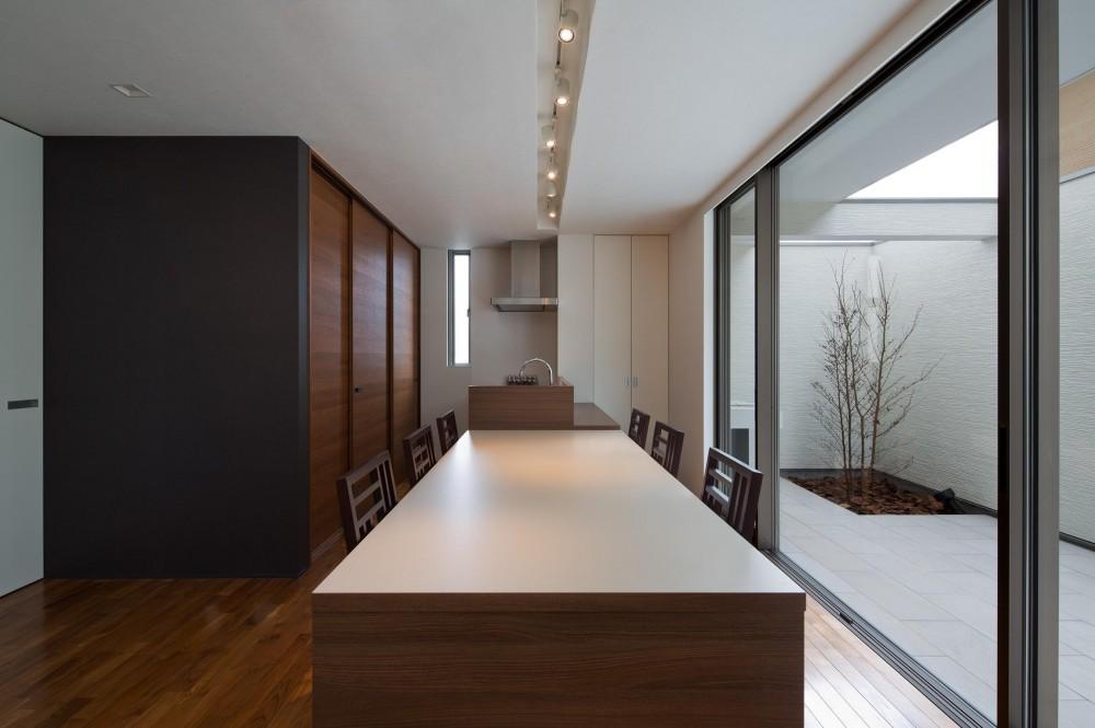M6-house 「幾何学の家」 (ダイニング)