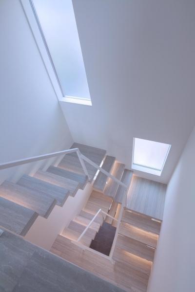 階段 (Y8-house 「木と石の家」)