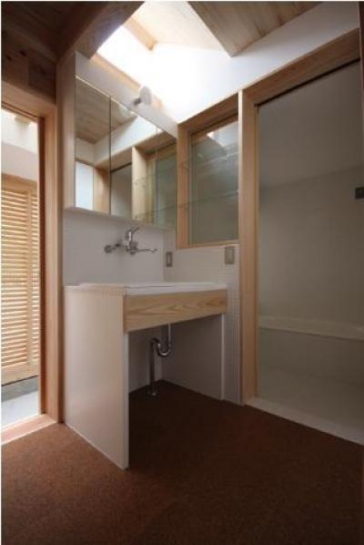 トップライトのある洗面エリア (Dormer Hut)