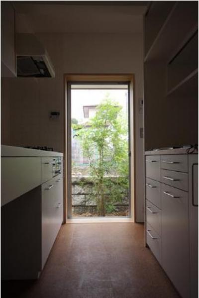 Dormer Hut (勝手口のあるキッチン)
