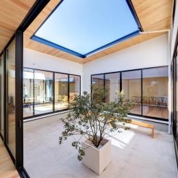 平屋・回廊の家 (回廊から眺めた中庭)