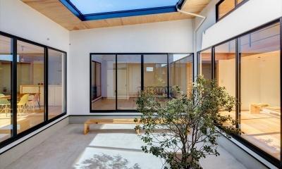 平屋・回廊の家 (日差しのある中庭と回廊)