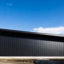 平屋・回廊の家の写真 黒いガルバリウム鋼板の外壁