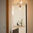 Takuya Hasegawaの住宅事例「平屋・回廊の家」