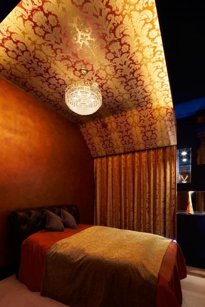 天井にこだわった寝室 (G-HOUSE)