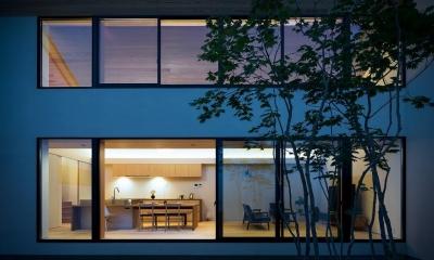 空を囲む家 (明かりの灯ったLDKを中庭から望む 2)