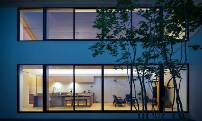 空を囲む家 (明かりの灯ったLDKを中庭から望む 1)
