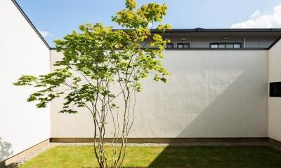 空を囲む家 (中庭)