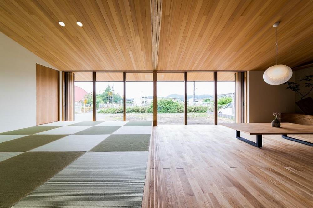 畳スペースのある勾配天井のLDK (自然の恵みを感じる家)