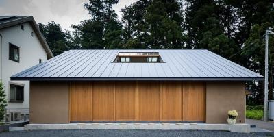 自然の恵みを感じる家 (大屋根の外観)