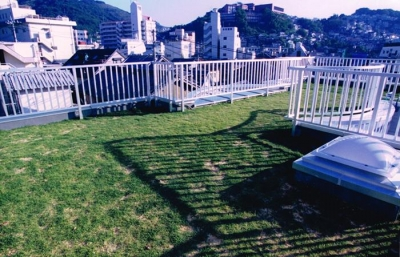 芝生のある屋上 (夫婦川の家)