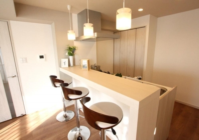 充実したライフスタイルを予感させるハイカウンターのあるキッチン (DK)