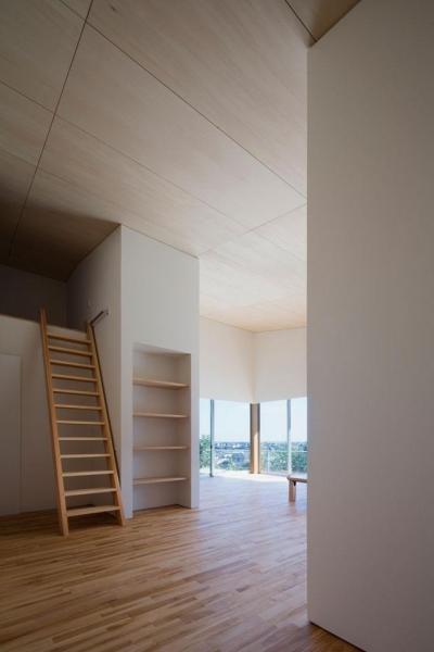 蜂伏の平屋 (美しいシナの天井)