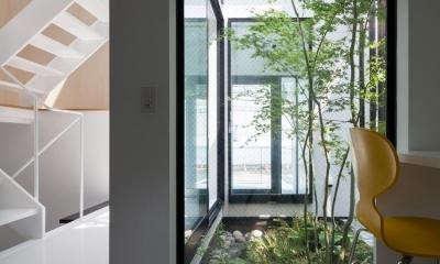 中庭のあるスキップフロアの家・OUCHI-32 (書斎)