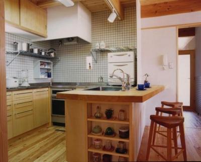 長屋門の家 (キッチン)