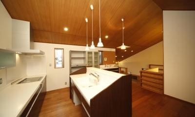 西新の家 (キッチン)