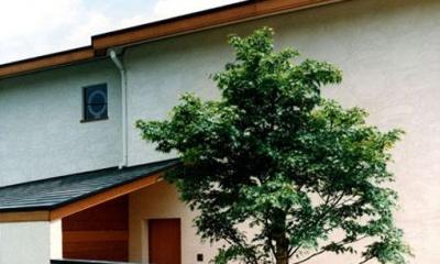 世田谷の事務所併用住宅 ー伽留羅(カルラ)ー (東側外観)