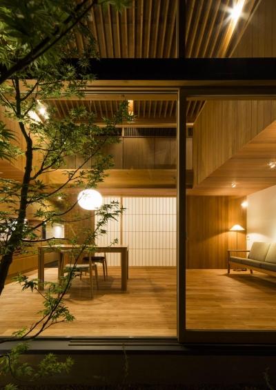中庭 (箕面の住宅3)