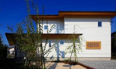 竹林の家 (外観・玄関アプローチ)