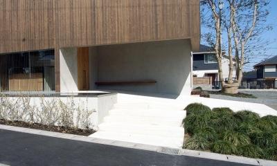 穏やかな時がながれる平屋の空間|中庭と水盤のある家 - BREATH (杉羽目板が印象的なエントランスポーチとシンボルツリー)