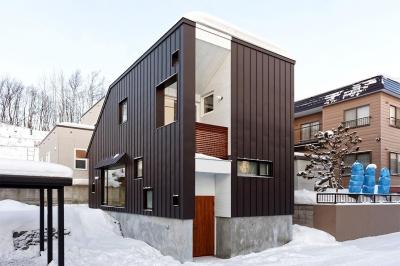 カラーガルバリウム鋼板の外観 (段差を繋ぐ家)