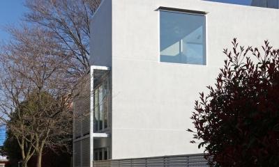 南烏山の二世帯住宅 (緑道の緑と対比をなす抽象的な建物形態)