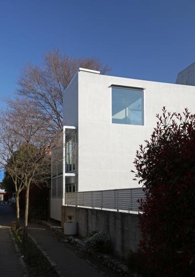 緑道の緑と対比をなす抽象的な建物形態 (南烏山の二世帯住宅)