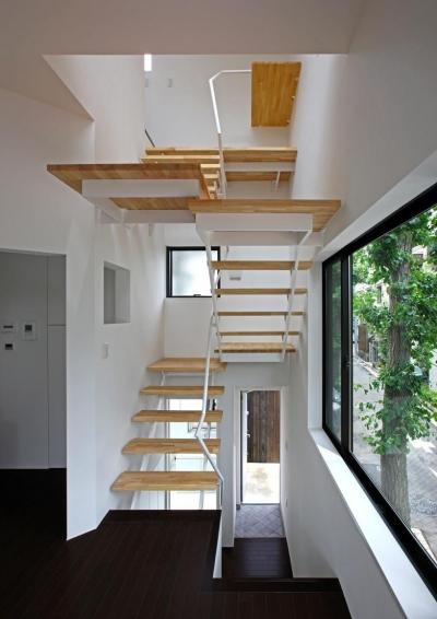 階段 (TOKYO TREE HOUSE)