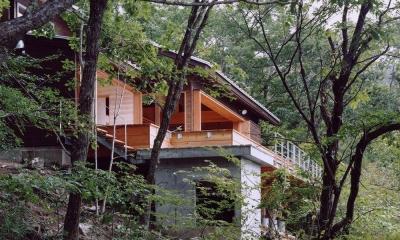 蓼科高原の家|大開口から八ヶ岳が一望できる週末住宅 (木の香る週末住宅|自然木に包まれた外観 傾斜地の基礎部分)