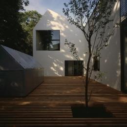 四連の家 (シンボルツリーのあるウッドデッキテラス)
