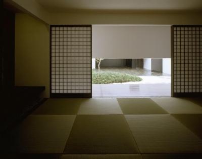 中庭が見える和室 (四連の家)