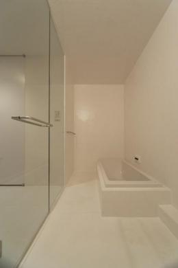 SN-house_小さな部屋の集合体 木陰のやすらぎのある家 (白いバスルーム)
