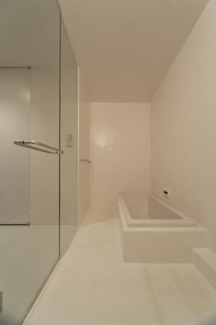 SN-house_小さな部屋の集合体 木陰のやすらぎのある家の部屋 白いバスルーム