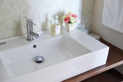 洗面 (部屋によって壁の色を楽しみたい。クラシカルフレンチのような雰囲気の空間)