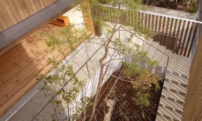 杉の家 杉格子の中庭のある家 (杉格子の中庭 緩やかなアプローチ階段 1)