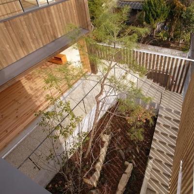 杉格子の中庭 緩やかなアプローチ階段 1 (杉の家 杉格子の中庭のある家)